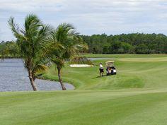 12 Best Hampton Golf Clubs ~Golf Club of the Everglades, Naples FL