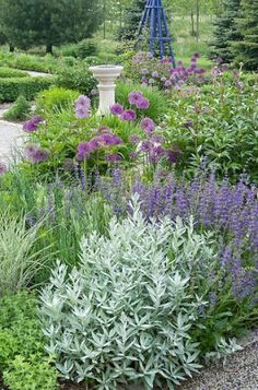 Country Gardener: Luscious early June Beautiful purple English garden design with fountain and obelisk Purple Garden, Colorful Garden, Sage Garden, Garden Leave, Back Gardens, Outdoor Gardens, Herb Garden Design, Garden Borders, Dream Garden
