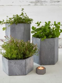 Hexagonal Outdoor Concrete Planters #nordichouse #concrete #planters