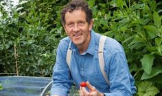 The secret to sensational strawbs - Monty Don has the answers for you