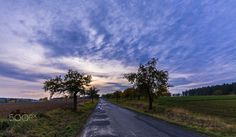 Sunset and road lined with apple trees by ☀️ Tomas Kriz on 500px