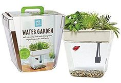 Back to the Roots Water Garden Fish Tank, Indoor Aquaponics Kit, Grow Your Own Organic Sprouts and Herbs, Self-Cleaning Beta Fish Tank