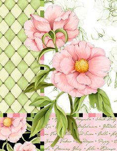 Pink flowers, green background