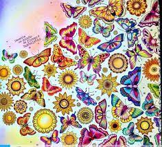 Image result for mandela from secret garden johanna