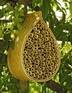 Mason Bee House     Boost your garden's productivity by providing a happy home for peaceful, non-stinging Mason bees. Slightly smaller than honeybees, mason bees are incredible pollinators. Each one visits as many as 1000 blooms per day — 20 times as many as a honeybee! Hang this natural bamboo house against a tree or wall where it will get morning sun and attract bees. Female bees fill the bamboo tubes with their eggs, and nectar and pollen for the young to eat.