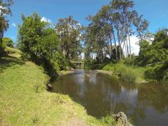 Information for Burgess Park Camping, Lamington, Beaudesert, Qld including video tours, photos, weather forecasts, facilities, and much more.