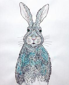 rabbit, water color, illustration, draw, bunny