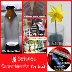 Mom to 2 Posh Lil Divas: 5 Science Experiments for Kids (The Sunday Showcase 4/20/13)