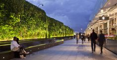 AECOM - Design + Planning - Practice Areas - Landscape Architecture - Living Wall at Westfield Shopping Centre