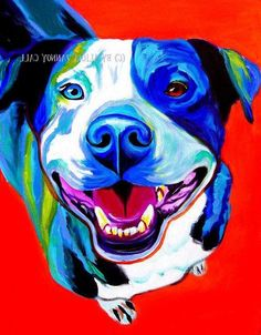 Print of Colorful Pit Bull Painting by Alicia VanNoy Call. This bright, happy artwork will make a wonderful addition to any room. Perfect for a dog Bull Painting, Shetland, Pit Bull Love, Arte Pop, Dog Portraits, Animal Paintings, Dog Art, Oeuvre D'art, Dog Lovers