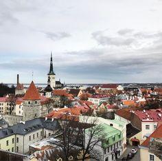 Un corto y rápido viaje de un día a Tallin Estonia bella ciudad agradable