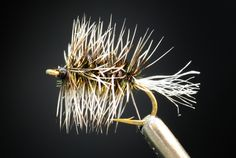 Fly Fish Food: Fly Tying
