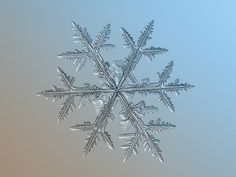 Extreme snowflake closeups shot with a compact cam