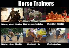 Horse Trainers LOL