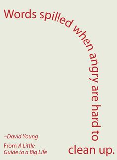 Words spilled when angry are hard to clean up. -David Young #ALittleGuide