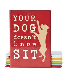 your dog doesn't know SIT! magnet via: threedog.com