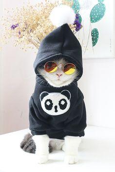 Teamlala 萌え萌えパンダ模様 猫犬パーカー 秋冬洋服 小型犬 ワンちゃん キャット 防寒服 2018新作