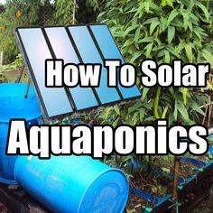 "GOOD 2 KNOW: How to Build a solar powered IBC tote Aquaponics System CHEAP and EASY. #dragonworksstudio ""Break-Through Organic Gardening Secret Grows You Up To 10 Times The Plants, In Half The Time, With Healthier Plants, While the ""Fish"" Do All the Work..."""
