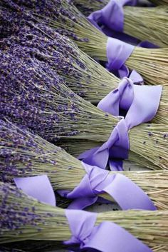 Bouquets of French Lavender with purple ribbons Dried Lavender Flowers, Lavender Bouquet, Lavender Blue, Lavender Fields, Lavander, Lavender Bridesmaid, Bridesmaid Bouquets, Bridesmaids, French Lavender