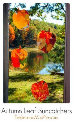 craft kids, fall leaves, autumn leaves, fall crafts, leaf suncatch, sun catcher, suncatchers, appl, autumn leaf