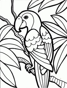 icolor i love coloring ii ae masque de venise coloring pages for kids pinterest
