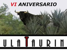 PeninsulaTaurina.com : Península Taurina cumple su sexto aniversario
