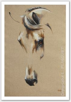 Meeting with a passionate artist: Laetitia Plinguet Painted Horses, Horse Drawings, Art Drawings, Horse Artwork, White Horses, Equine Art, Horse Pictures, Native American Art, Zebras