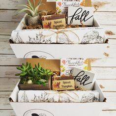 Pumpkin spice and everything nice! Check out more of our Fall gift boxes with Spiced Pumpkin soap from Tracy's NaturOwl Soaps and cute mini wood signs from Fonts and Firewood. Spiced Pumpkin, Pumpkin Spice, Fall Gifts, Thankful And Blessed, Hello Autumn, Gift Boxes, Giving, Soaps, Firewood