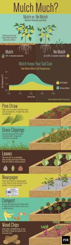 Diagrams That Make Gardening So Much Easier Leaves, grass clippings, newspaper: become a mulch master with this chart.Leaves, grass clippings, newspaper: become a mulch master with this chart. Benefits Of Gardening, Organic Gardening Tips, Potager Bio, Potager Garden, Edible Garden, Garden Planning, Garden Landscaping, Garden Shrubs, Wood Chips Landscaping