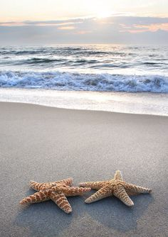 Reminds of the poem of the man who saved starfish every day...it mattered to that one!
