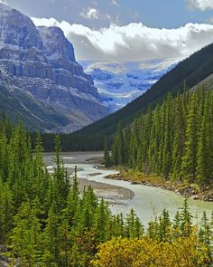 Along the Icefields Parkway in the Canadian Rockies, Alberta