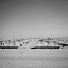 WW2. At the El Shatt camp near the southern end of the Suez Canal, thousands of Yugoslavian refugees were settled in tents pitched in the baking sands.