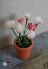 TUTORIAL - carnations