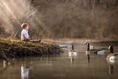 Friends From Across the Pond by Adrian C. Murray on 500px