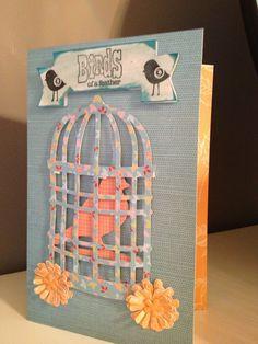 Bird cage  Using creative  cards cricut cartridge