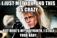 I just met you, and this is crazy but here's my labyrinth, i stole your baby.