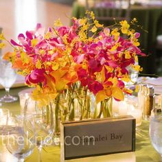 A cluster of vases filled with orchids - make all the flowers red mokara and it's exactly what I picture for my centerpieces.