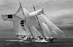 """From Darrall Slater: """"The tall ship """"Amazing Grace"""" Black N White Images, Black And White, Galveston Bay, Sailing Adventures, Wooden Ship, Nautical Art, Sail Away, Old Glory, Tall Ships"""