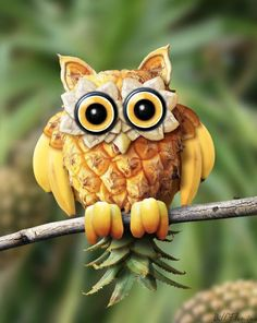 Owl from fruit