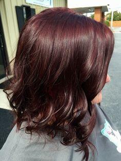 Plum Hair Color Dark With Purple Tint
