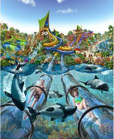 Awesome waterpark, Aquatica Orlando