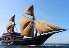 "We sailed upon the amazing ""Alila Purnama""! Launched in 2012, the ""Alila Purnama"" (translated, the ""Full Moon"") was hand-built in the style of a traditional Indonesian phinisi. All polished teak and rattan, with billowing camel-colored sails, the ""Alila Purnama"" is a 150-foot beauty. She comes with a dash of adventure too - we saw vicious Komodo dragons on our cruise. http://www.sandinmysuitcase.com/alila-purnama-review-cruising-indonesia/"