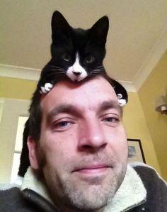 Cute Tuxedo Cat Hat