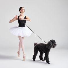 Ballerina Photography, Dance Photography, Equine Photography, Dance Photos, Dance Pictures, Grad Pictures, Ballet Inspired Fashion, Black Lab Puppies, Corgi Puppies