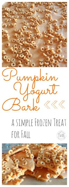 Pumpkin Yogurt Bark