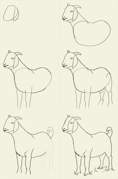 How to draw goat - drawing and digital painting tutorials online