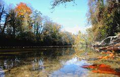 L'Ain en automne, c'est là qu'elle est la plus belle !
