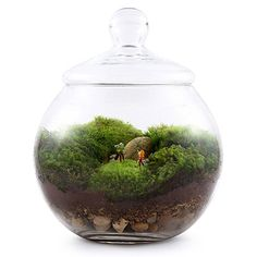 The Grow Old With You terrarium kit features a petite pair of lovebirds snuggling close on a teeny-tiny park bench.