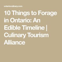 10 Things to Forage in Ontario: An Edible Timeline | Culinary Tourism Alliance