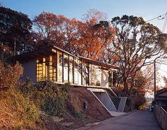 Japanese Home Among The Trees Uses Bookshelves And Glass For Walls